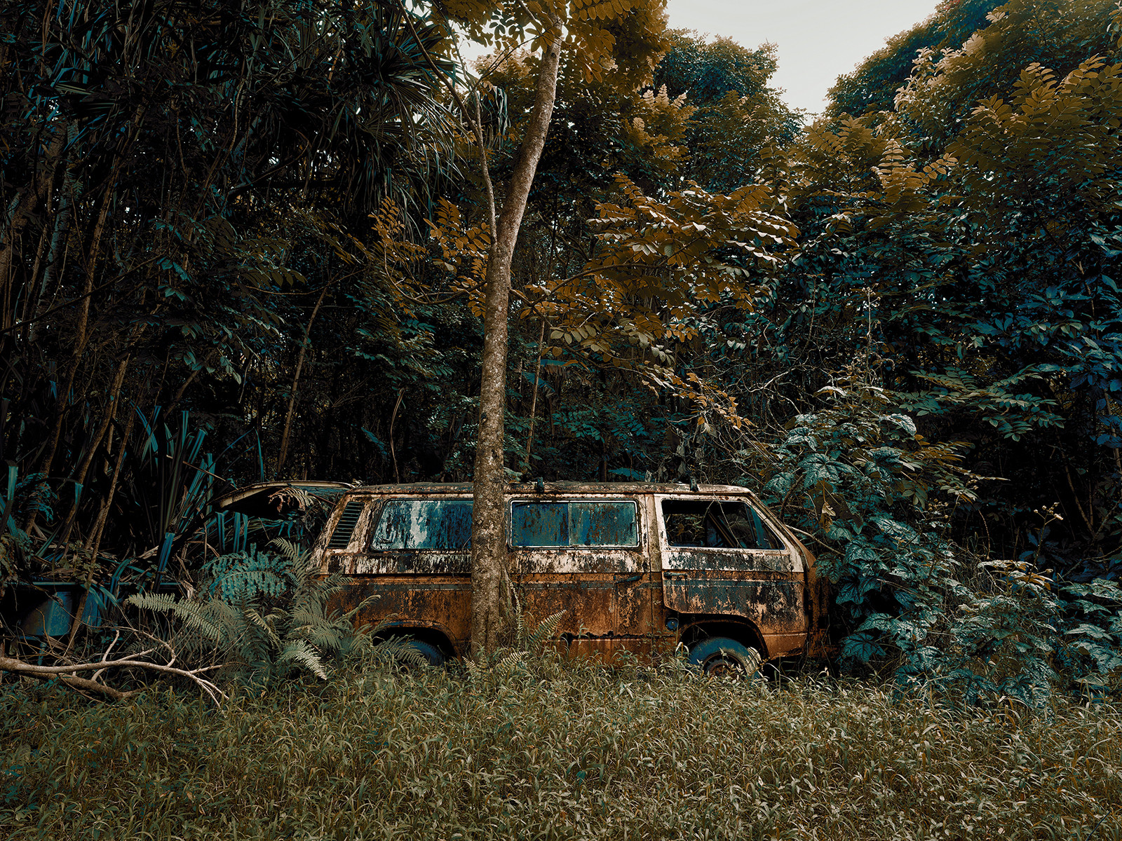 Jungle Cars of Maui personal work 5 by Thomas STROGALSKI