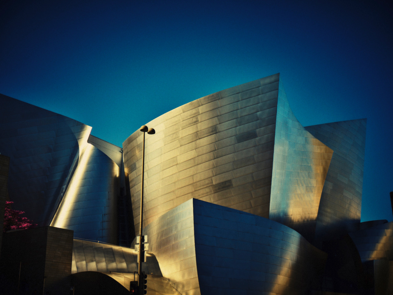 Los Angeles...of plants and steel 1 by Benjamin PICHELMANN